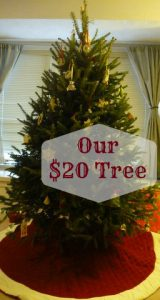 How we got a beautiful tree for just $20.