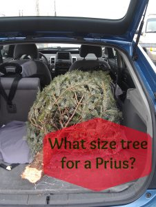 Avoid the stress of strapping your tree to the roof of your car and get one that fits inside, instead!