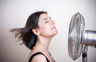 fan or air conditioner